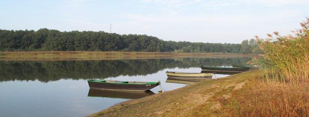 Fédération de pêche de Saône-et-Loire : Étang de Longpendu